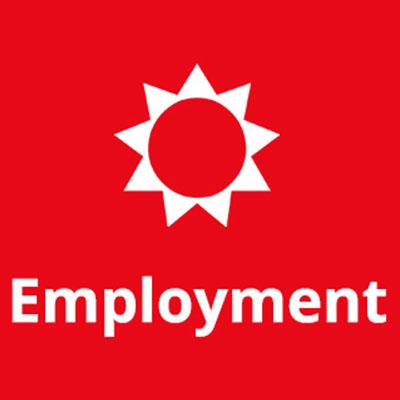 Employment icon.